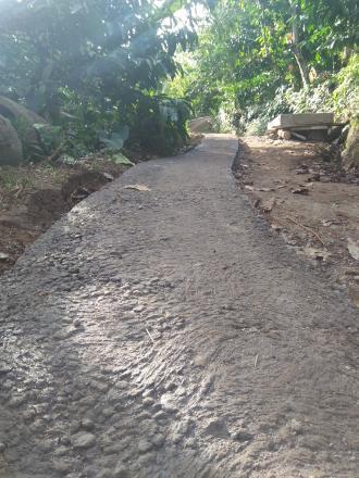 Pembangunan Jalan Usaha Tani Menuju Banjar Baru